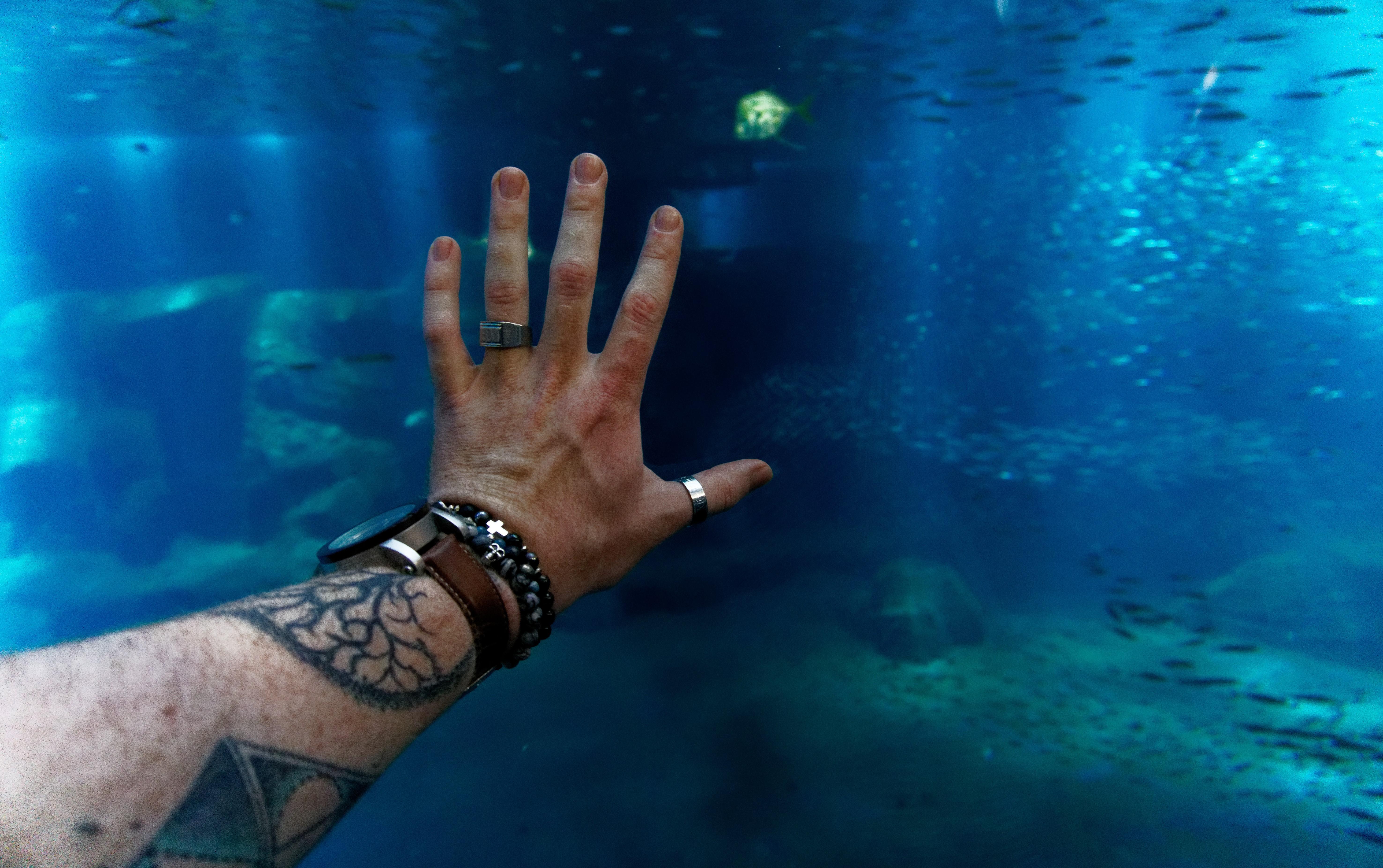 toucher l'ocean à nausicaà boulogne sur mer instameet