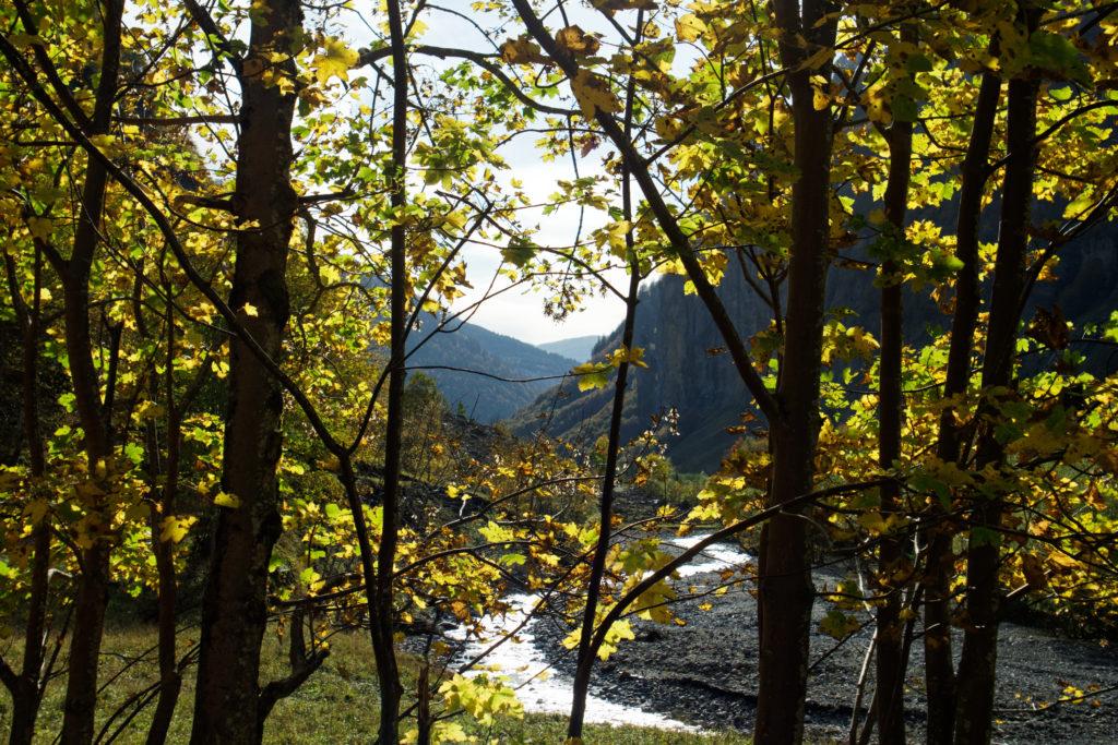 vue-poetique-entre-les-arbres-sixt-fer-a-cheval-automne-couleurs-automne-riviere-auvergne-rhone-alpes