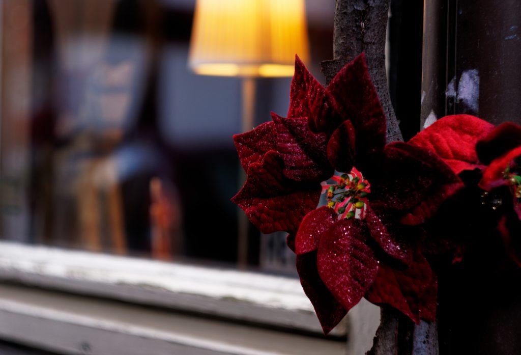 decoration-vue-dans-les-rues-de-monschau-montjoie