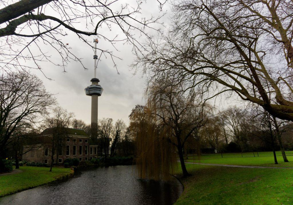 vue-sur-l-euromast-depuis-le-het-park-a-rotterdam