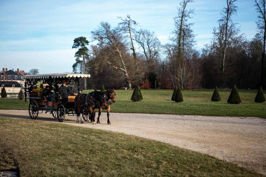 balade-en-caleche-dans-le-parc-du-chateau-de-fontainebleau-histoire
