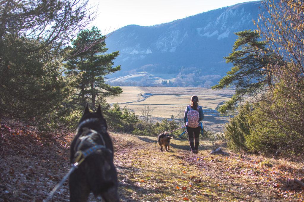 carla-aventure-atlas-for-men-cani-rando