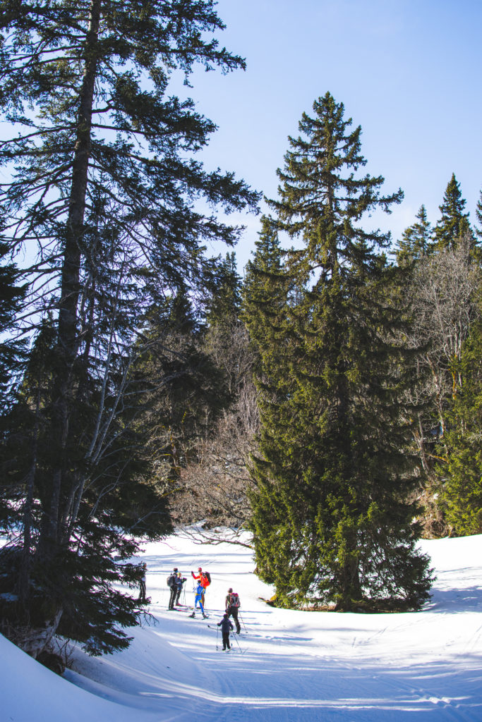 autrans-randonnee-ski-de-fond-sapin-atlas-for-men-massif-du-vercors