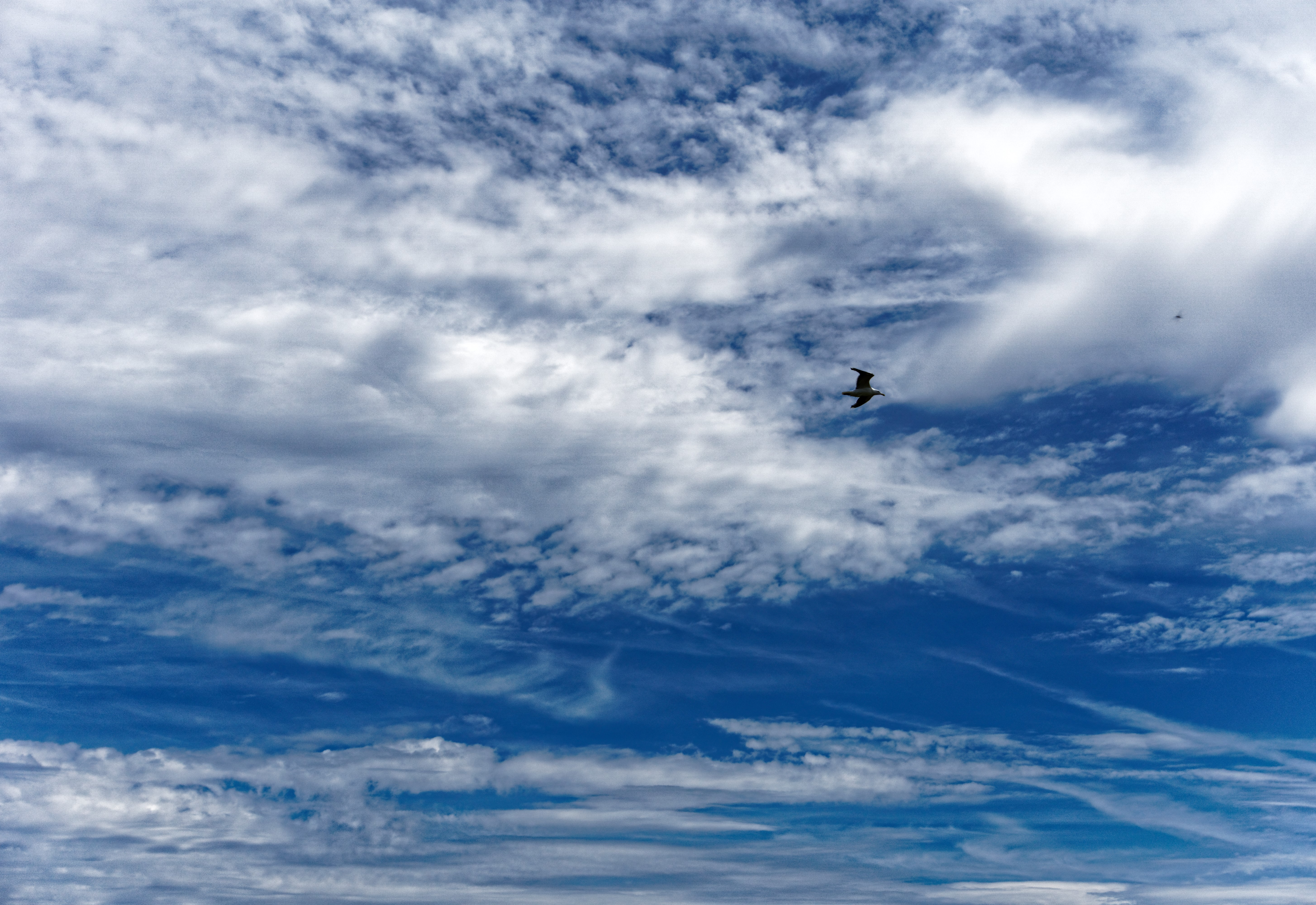 Ciel Bleu, et dentelle de nuage