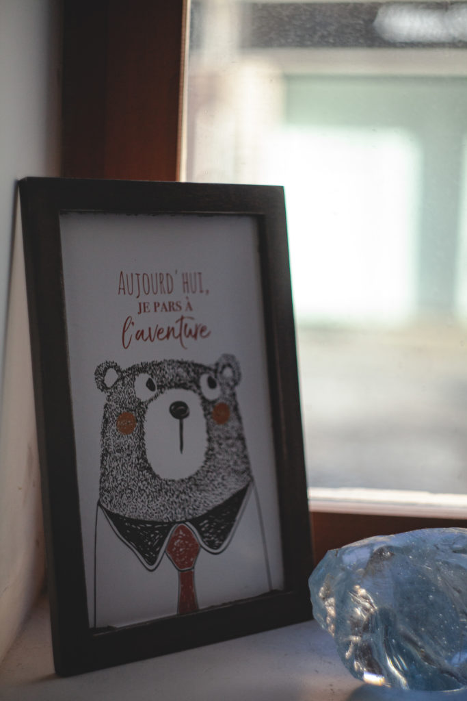 aujourdhui-je-pars-a-l-aventure-Alex-stories-ours
